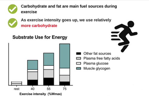 How-To-Economize-With-Glycogen-In-A-Marathon-Glycogen-and-Work-Intensity