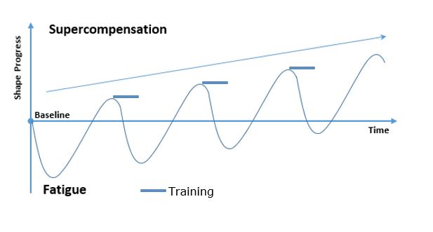 Supercompensation-2