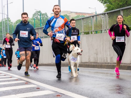 Oxygen-Utilization-Rate - The-Astonishing-Marathon-Factor-Running-Race-With-Dog