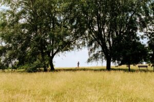 Tested-benefits-of-running-are-what-makes-remarkable-results-woman-running-in-nature