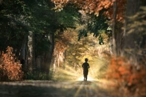 10-Remarkable-Secrets-By-Exciting-Running-boy-in-wood